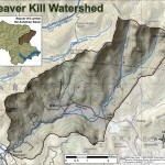 Map of the Beaverkill