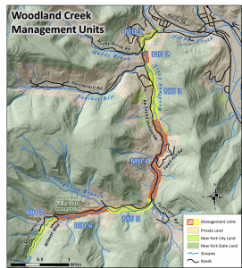 Woodland Management Units