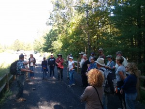 "A scene from ""The Importance of Watershed Wetlands"" walk and talk from Ashokan Watershed Month 2019."