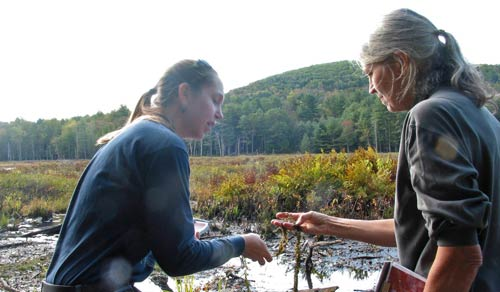 Sampling vegetation at Yankeetown Pond
