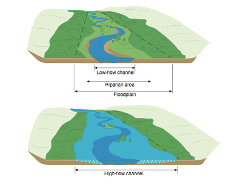 diagram of floodplain during low flow and high water events