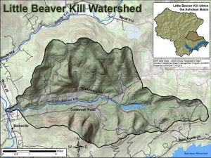 map of Little Beaver Kill watershed