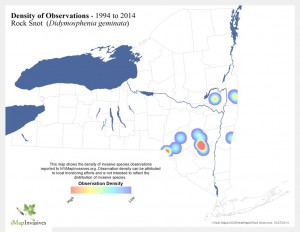 Density Observations of Rock Snot. map courtesy of NYIS