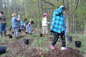 Girl Scouts Planting Stream Buffer