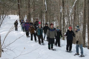Participants enjoy the 2019 AWSMP Snowshoe Stream Walk on Rochester Hollow Trail.