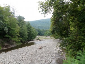 The Catskill Rose is just a stone's throw away from the Beaver Kill.
