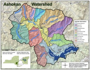 The sub-basins of the Ashokan Watershed