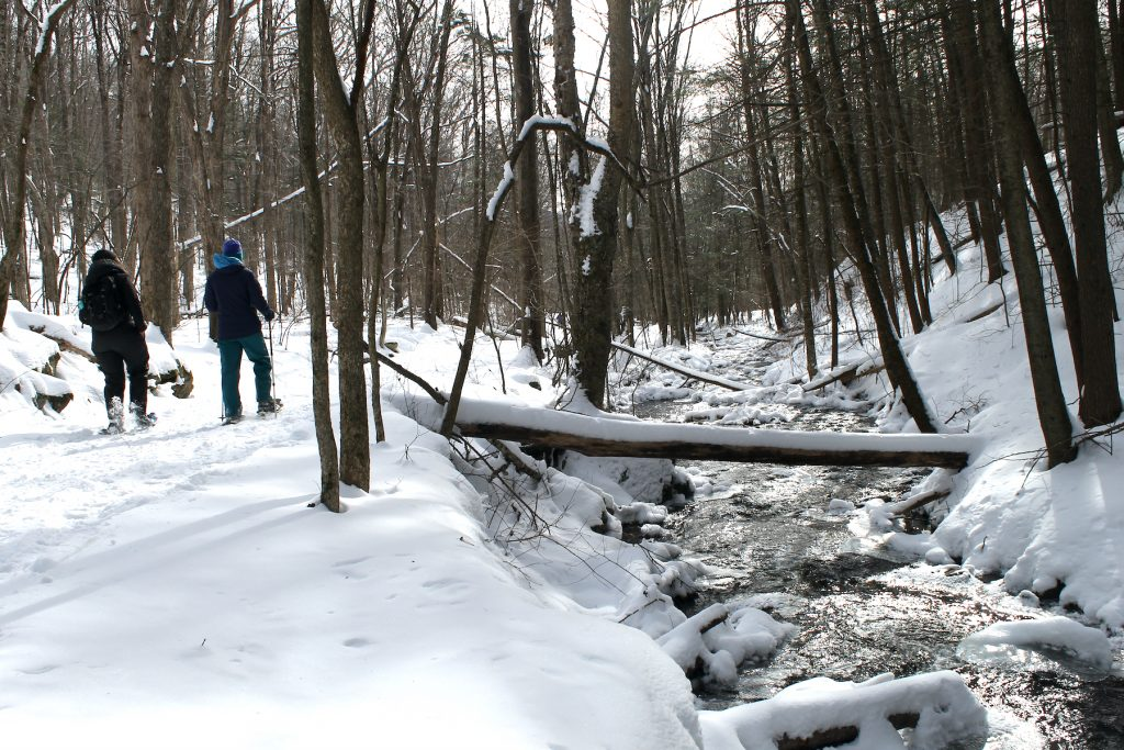 Image of two people snow shoeing on a trail near stream