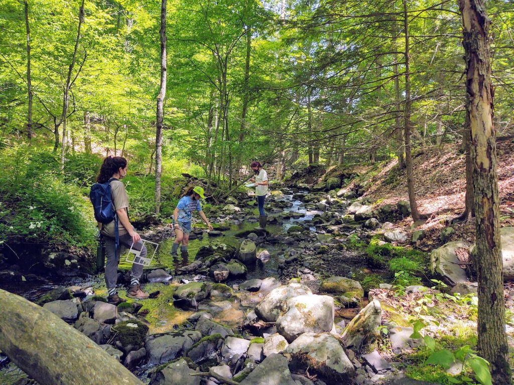 Three young people standing in a small stream conducting a science activity